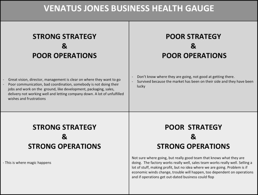 VJ Business Health Gauge